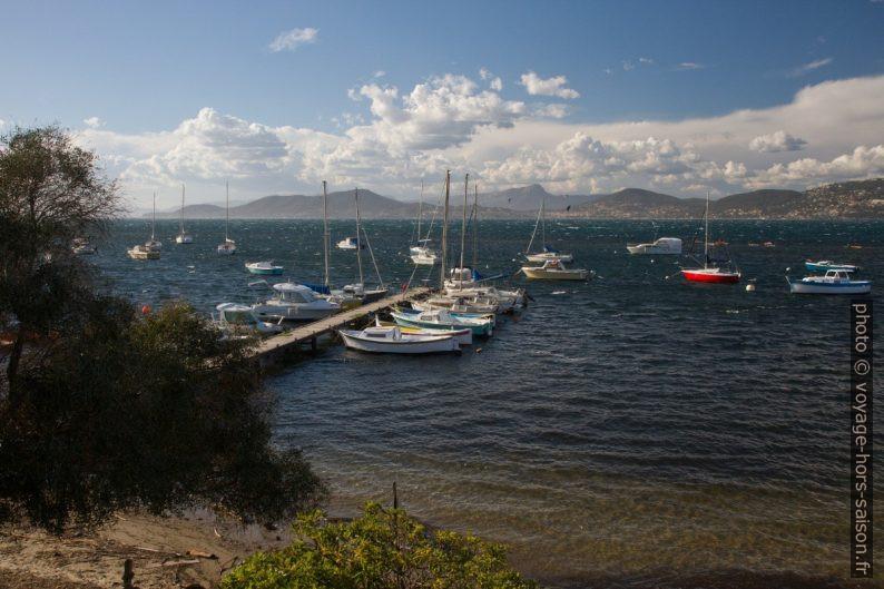 Bateaux à quai dans le Port de la Madrague. Photo © Alex Medwedeff