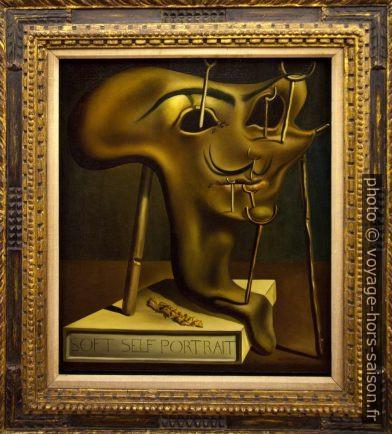Autoportrait mou au lard grillé - Dalí - 1941. Photo © André M. Winter