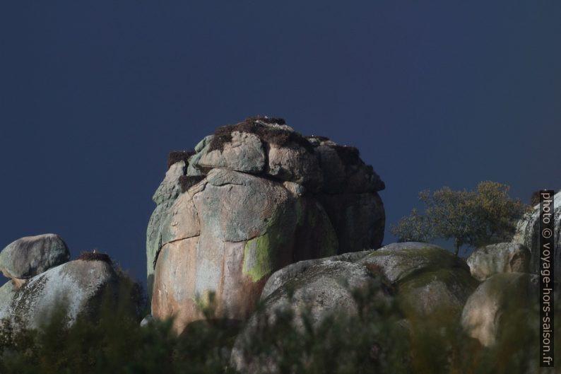 Nids de cigognes sur les rochers des Barruecos. Photo © André M. Winter