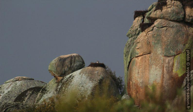 Rochers granitiques des Barruecos et les nids des cigognes. Photo © André M. Winter
