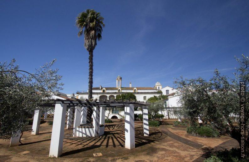 Pergola dans le Jardim das Oliveiras. Photo © André M. Winter