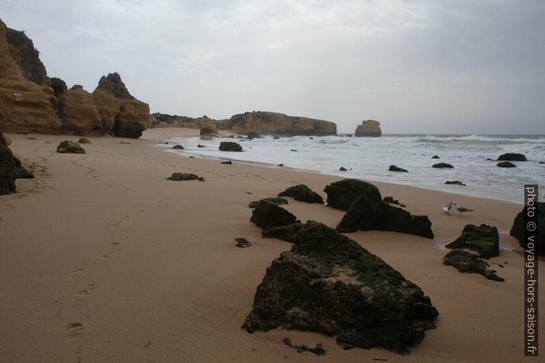 Vue retour vers la Praia do São Rafael. Photo © Alex Medwedeff