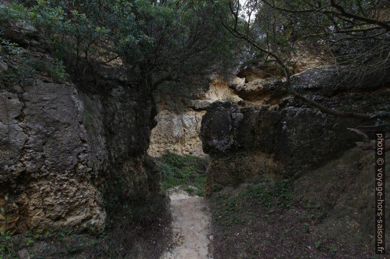 Chemin d'accès à la Praia Secreta. Photo © André M. Winter