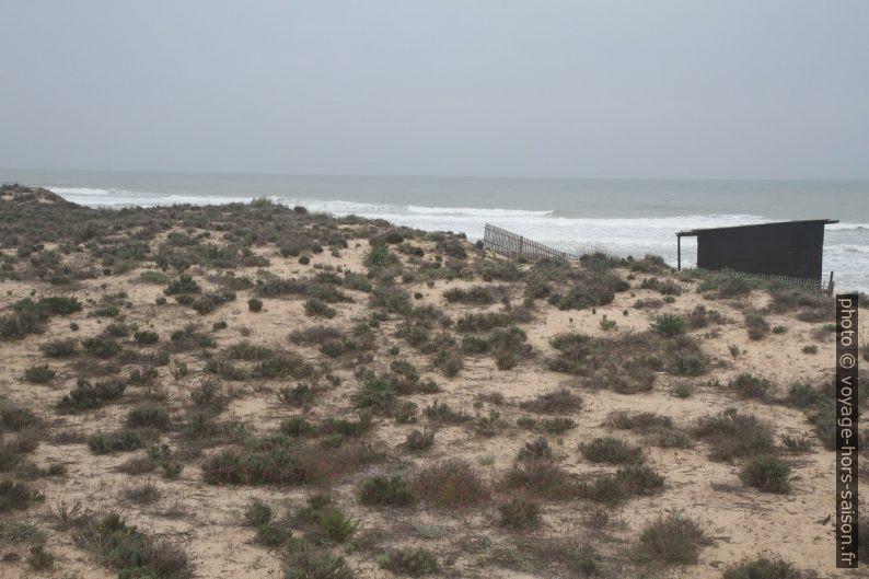 Sur le cordon dunaire derrière la Praia Grande de Pêra. Photo © Alex Medwedeff