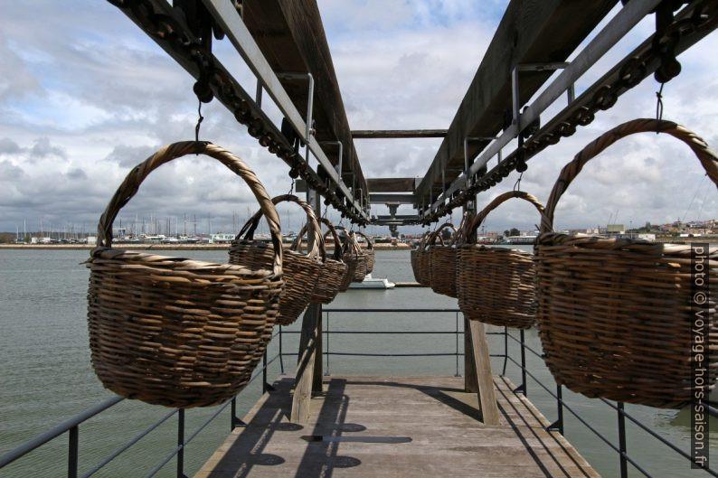 Chaîne de paniers de transport de poisson du quai vers l'usine. Photo © André M. Winter