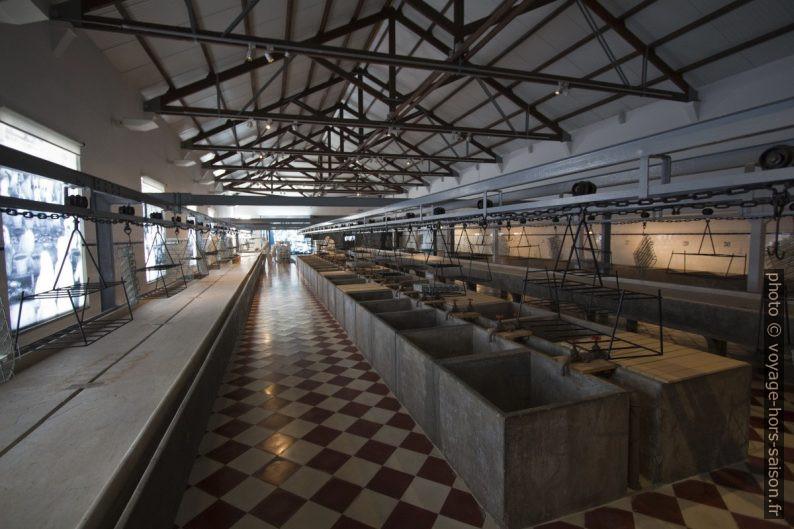 Halle d'arrivée du poisson dans l'usine de Portimão. Photo © André M. Winter