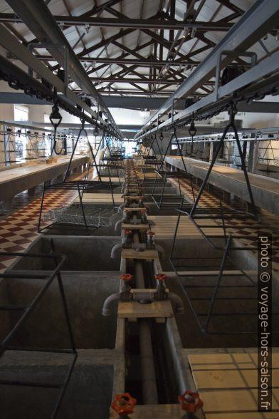 Bassins de lavage du poisson dans l'usine de Portimão. Photo © André M. Winter