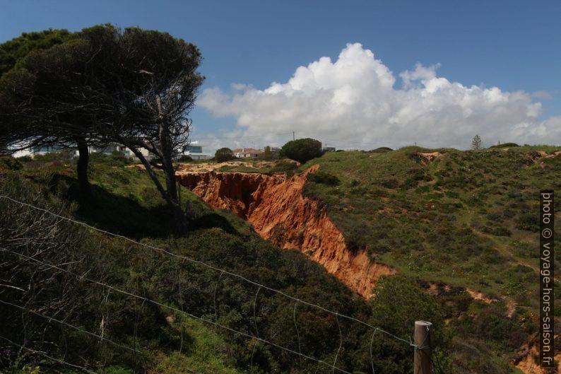 Érosion pluviale sur la Ponta da Piedade. Photo © André M. Winter