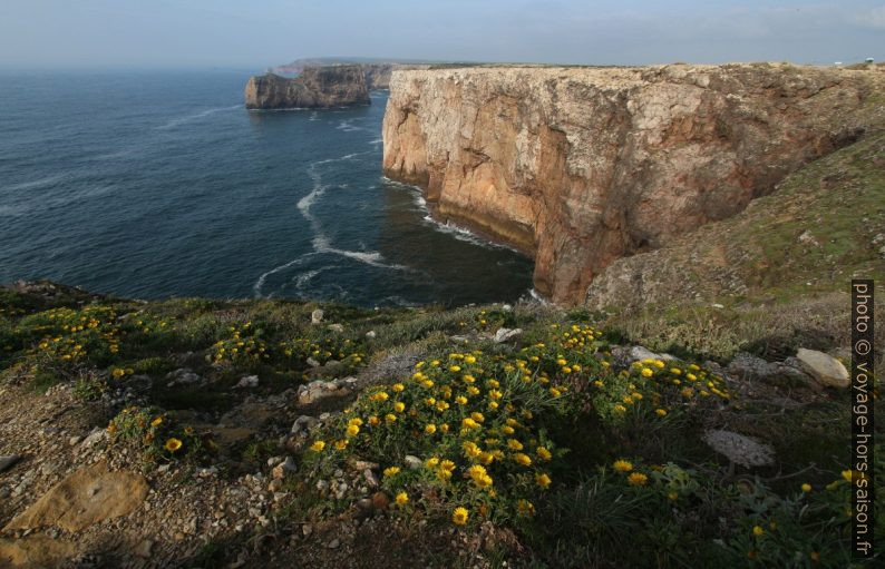 Côte au nord-est de Cabo São Vicente. Photo © André M. Winter