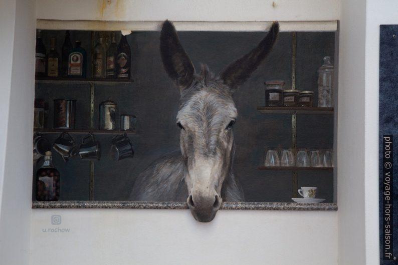 Un âne en trompe-l'œil sur le Quiosque Agapito par Uwe Rachow. Photo © Alex Medwedeff