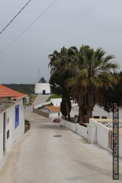 Moulin et palmiers dans le village d'Odeceixe. Photo © André M. Winter
