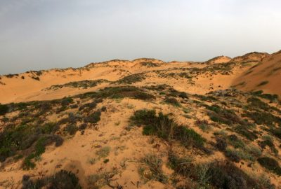La grande dune d'Almograve. Photo © André M. Winter