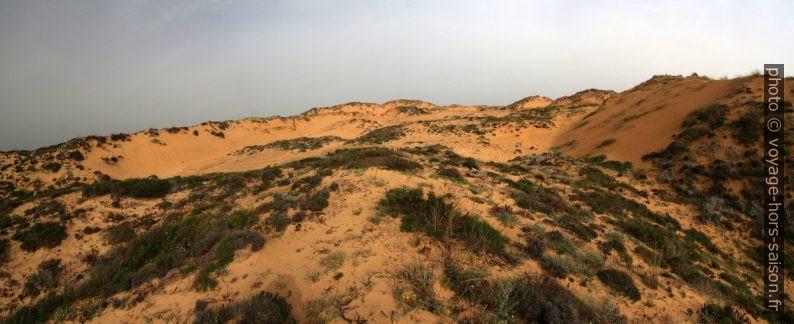 La grande dune d'Almograve. Photo © André M. Winter