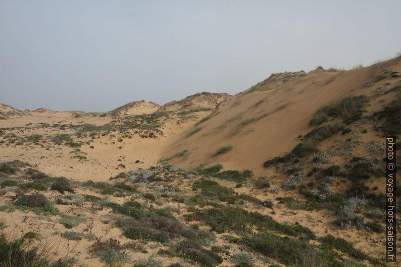 Sable de la grande dune d'Almograve. Photo © Alex Medwedeff