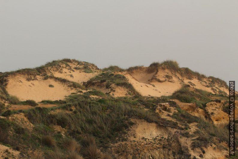 Dunes à l'arrière de la Praia do Carreiro das Fazendas. Photo © André M. Winter
