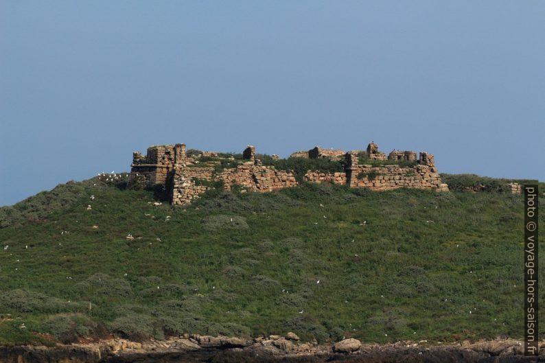 Forte da Ilha do Pessegueiro. Photo © André M. Winter