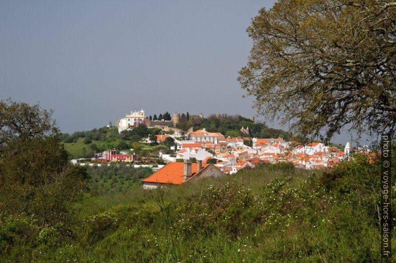 Colline du château de Santiago do Cacém. Photo © Alex Medwedeff