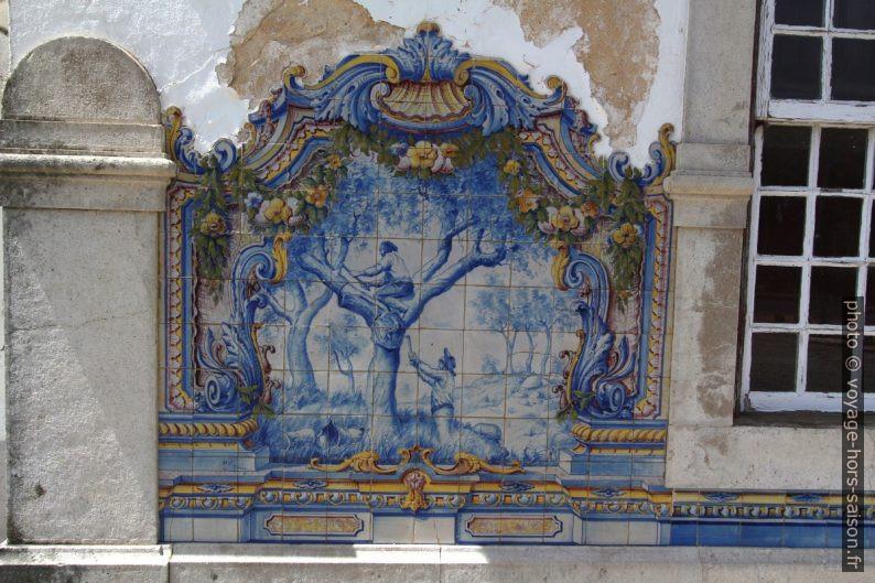 Azulejo multicolore montant la taille du liège. Photo © André M. Winter