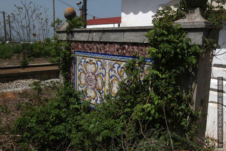 Azulejo multicolore couvert par la végétation rampante. Photo © André M. Winter