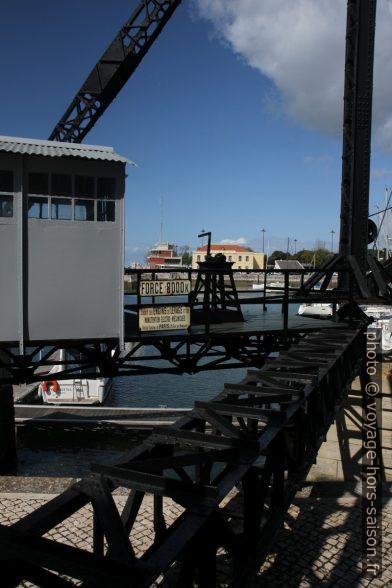 Grue dans le port Doca do Bom Sucesso. Photo © Alex Medwedeff
