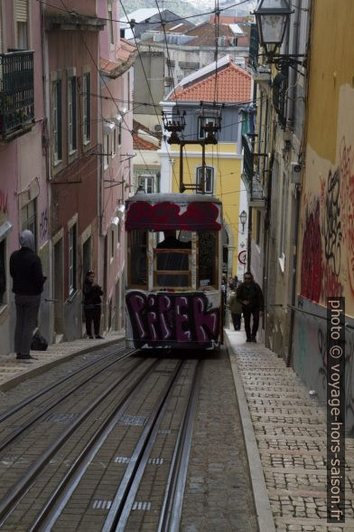 Une rame de l'elevador da Bica couverte de graffiti. Photo © Alex Medwedeff