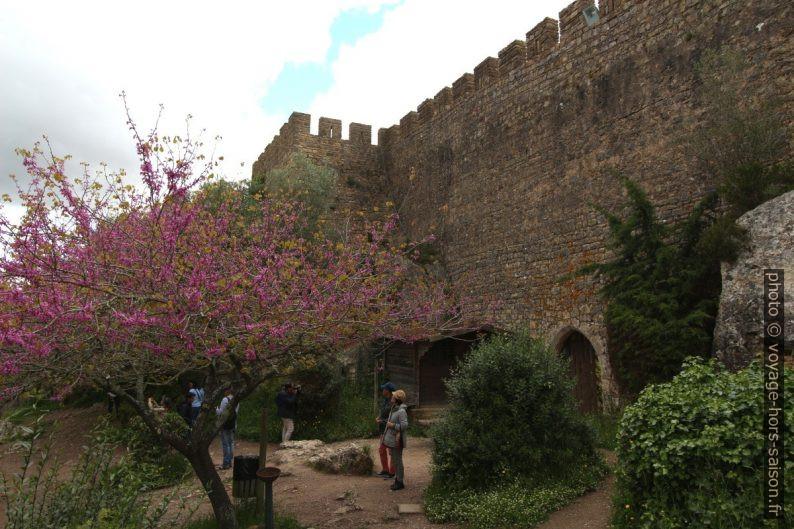 À l'ouest sous la muraille médiévale de Óbidos. Photo © André M. Winter