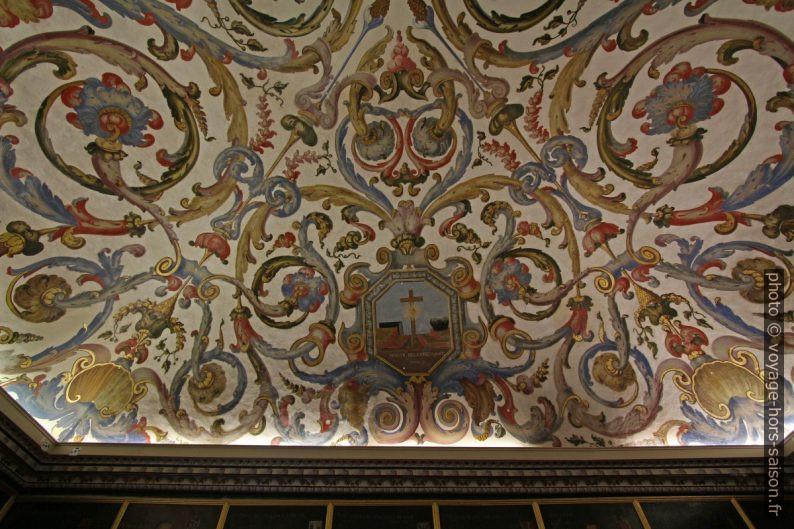 Fresques entrelacées au plafond de la Sala do Exame Privado. Photo © André M. Winter