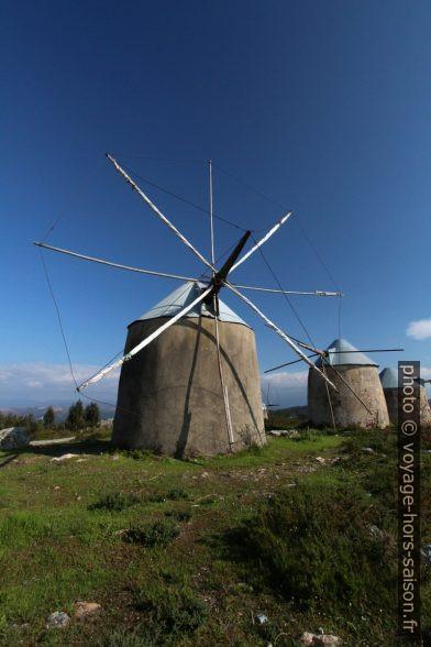 Quelques uns des moulins des Moinhos de Gavinhos. Photo © André M. Winter