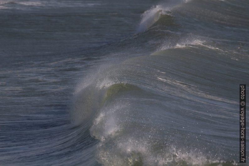 Vue d'une vague déferlante dans son axe. Photo © André M. Winter
