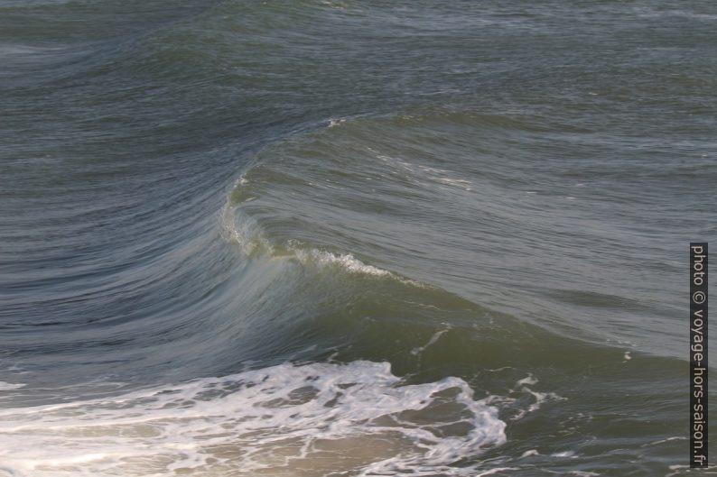 Une vague commence à déferler. Photo © André M. Winter