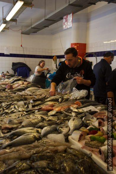 Étal du le Mercado do Peixe da Costa Nova. Photo © Alex Medwedeff