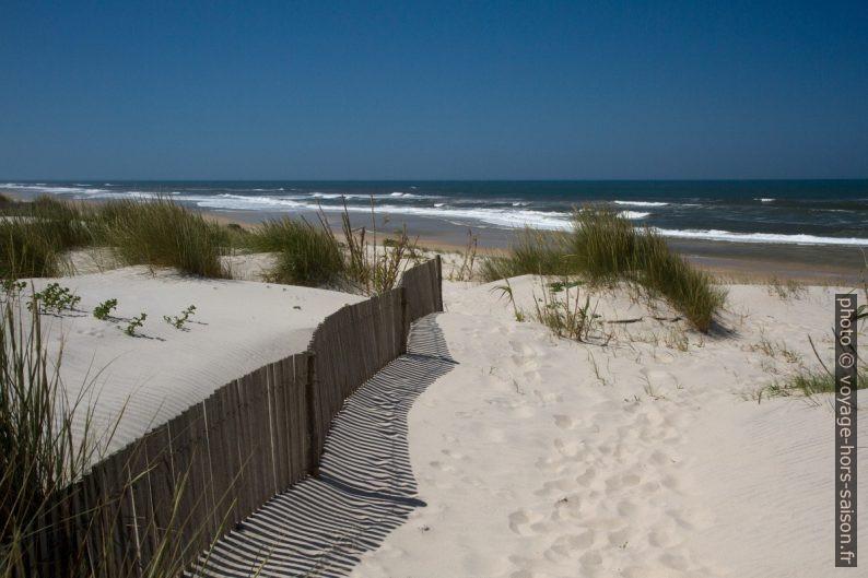 Dunes à l'arrière de la Praia da Gafanha da Boa Hora. Photo © Alex Medwedeff