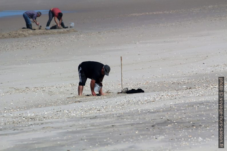 Chercheurs d'appâts dans l'estran par mer basse. Photo © André M. Winter