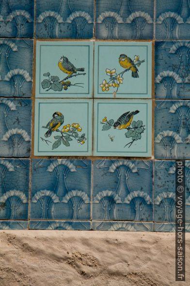 Azulejos montant des oiseaux dans la cour de la Casa do Major Pessoa. Photo © Alex Medwedeff