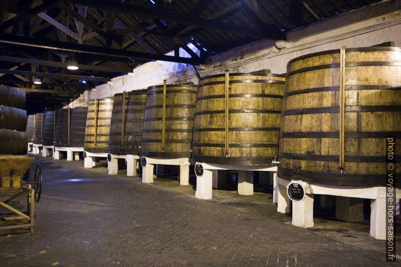 Grands tonneaux contenant plus de 9000 litres de porto vintage. Photo © André M. Winter