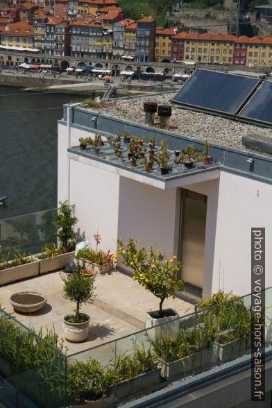 Terrasse avec plantes en pots. Photo © Alex Medwedeff