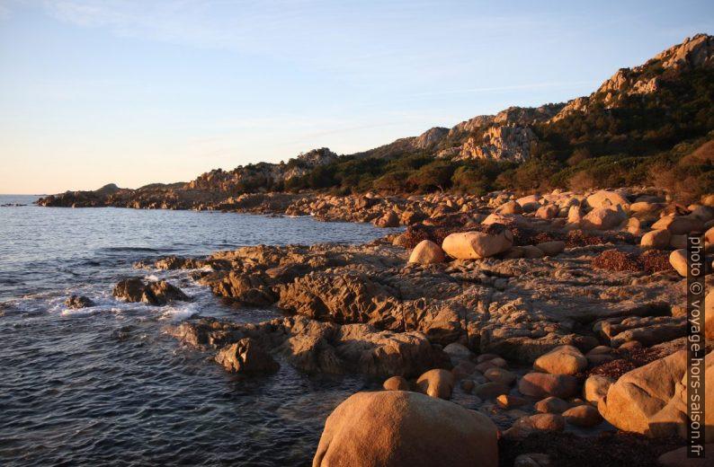 Côte rocheuse du Capo Comino. Photo © Alex Medwedeff