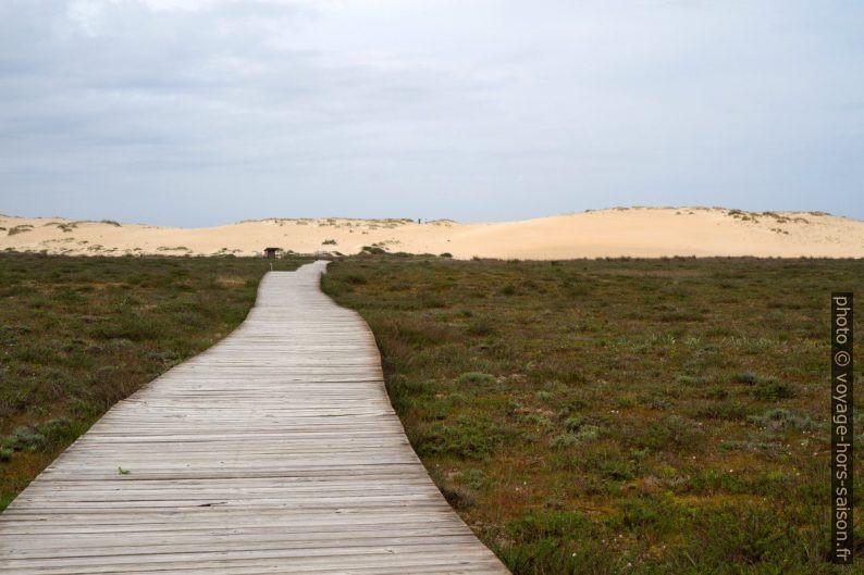 Partie nord-ouest de la Dune de Corrubedo. Photo © André M. Winter