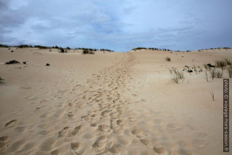 Traces de pas sur la Dune de Corrubedo. Photo © Alex Medwedeff