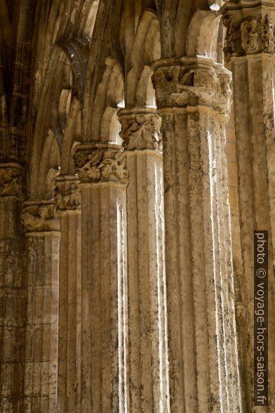 Colonnettes du remplage d'une arcade du cloître de la cathédrale d'Oviedo. Photo © Alex Medwedeff