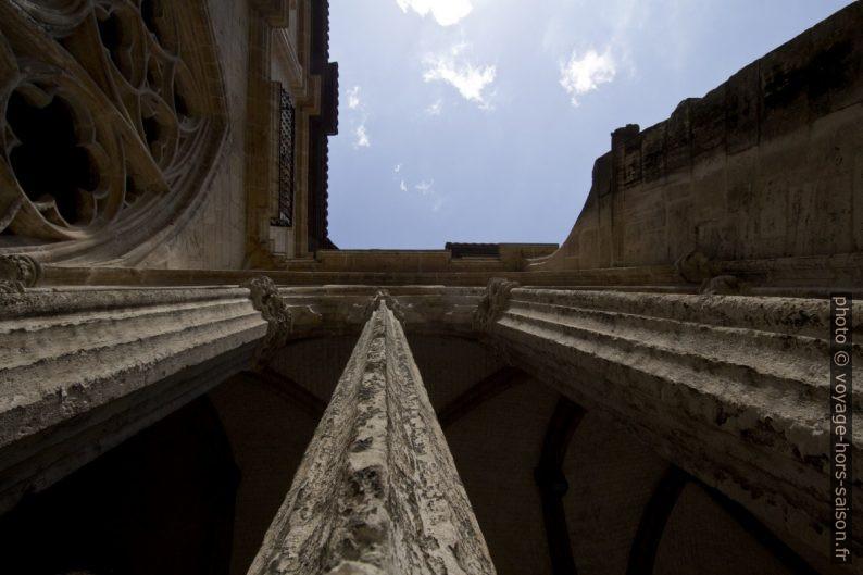 Vue verticale des colonnettes du remplage d'une arcade du cloître. Photo © André M. Winter