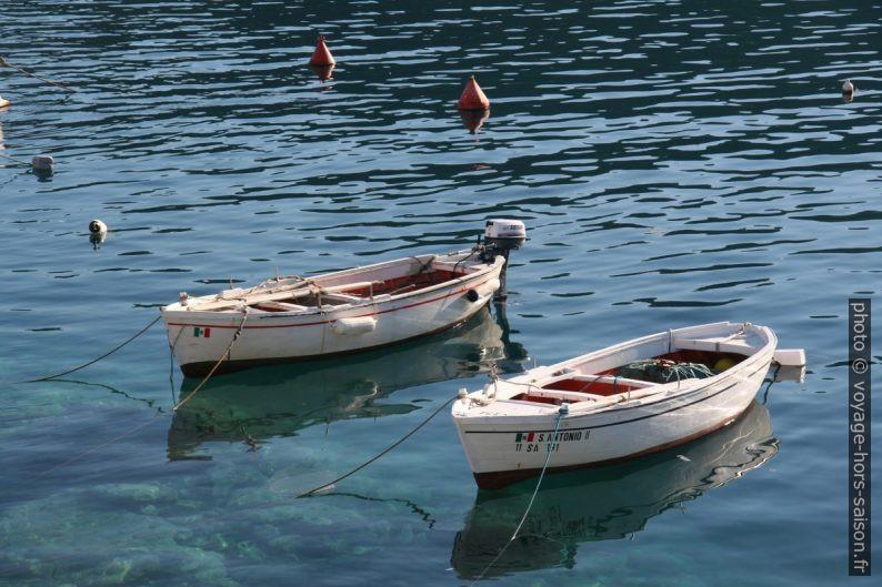 Petites barques dans le port de Palinuro. Photo © Alex Medwedeff