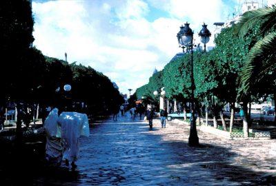 Avenue Habib Bourguiba شارع الحبيب بورقيبة à Tunis. Photo © Leonhard Schwarz