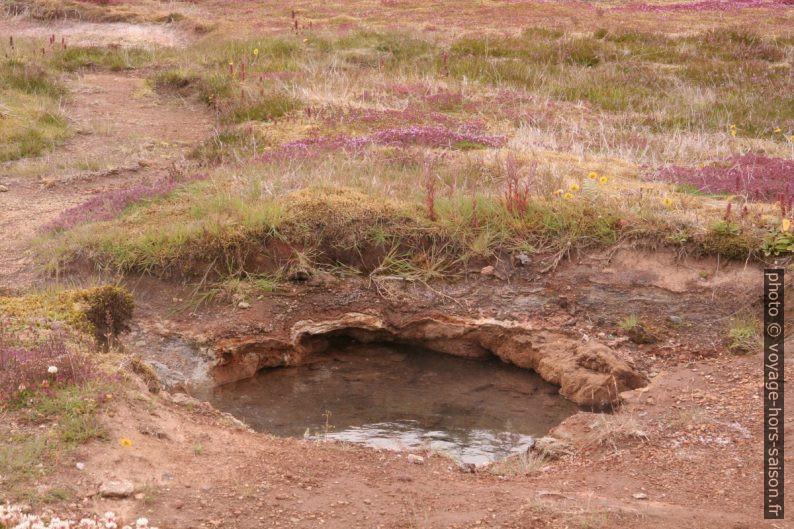 Trou d'eau dans la zone Haukadalur. Photo © André M. Winter