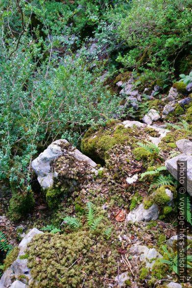 Notre point final sur la rive gauche dans les Gorges de l'Artuby. Photo © André M. Winter