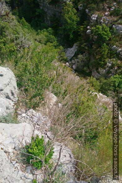 L'Artuby est enfoncé dans son canyon à droite. Photo © André M. Winter