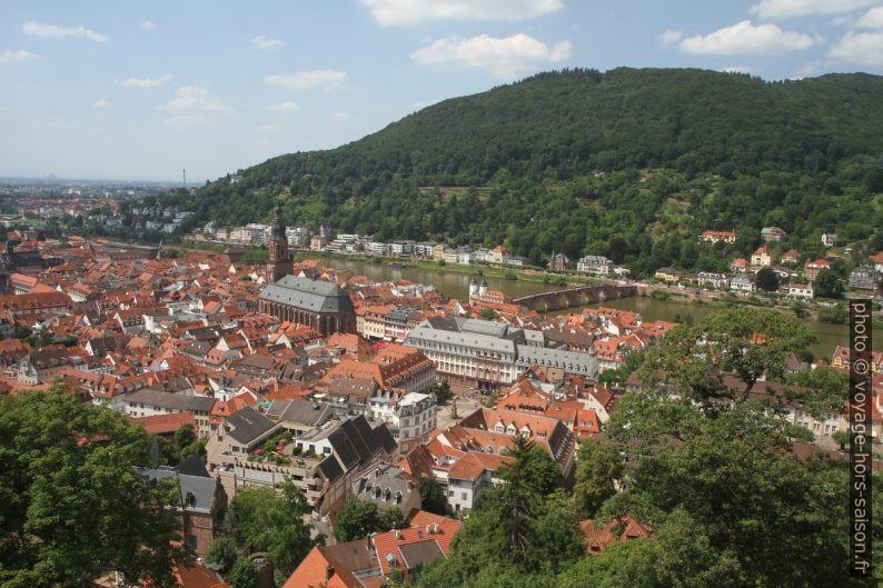 Vue sur le centre de Heidelberg. Photo © Alex Medwedeff