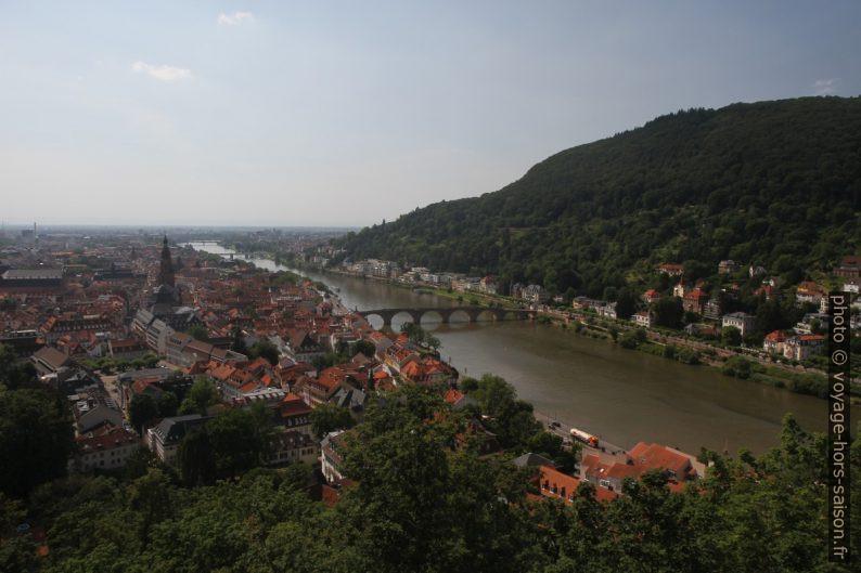 Heidelberg vu du château. Photo © Alex Medwedeff