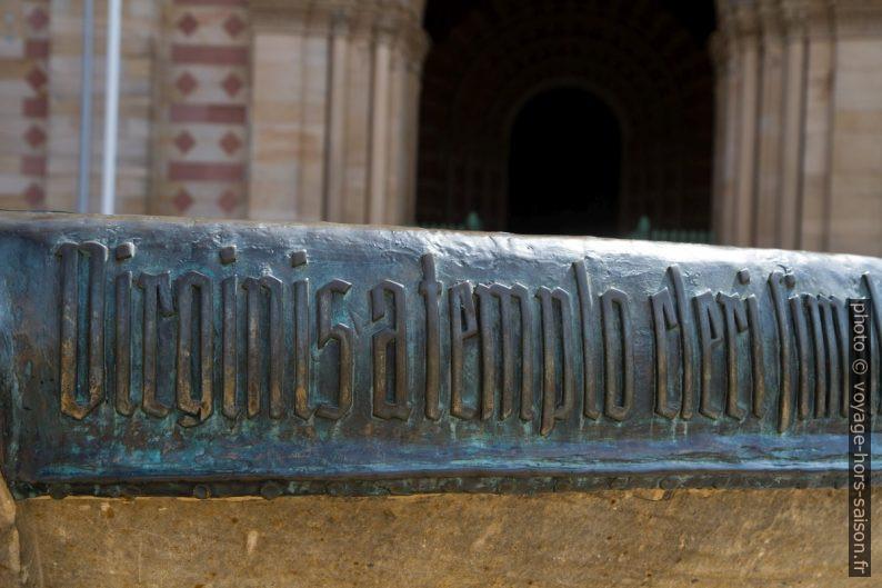 Bord du grand vase devant la cathédrale. Photo © Alex Medwedeff