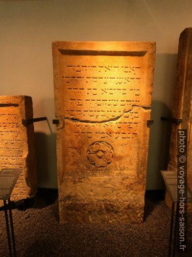 Une pierre tombale dans le musée juif SchUM. Photo © André M. Winter